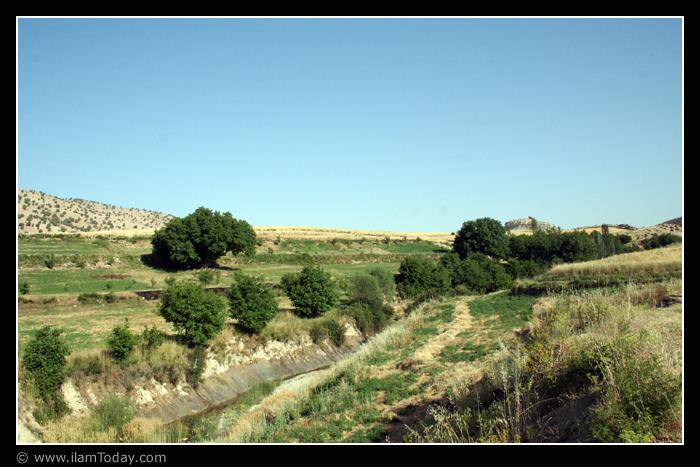 از باغهای روستای چشمه کبود(گرگو)